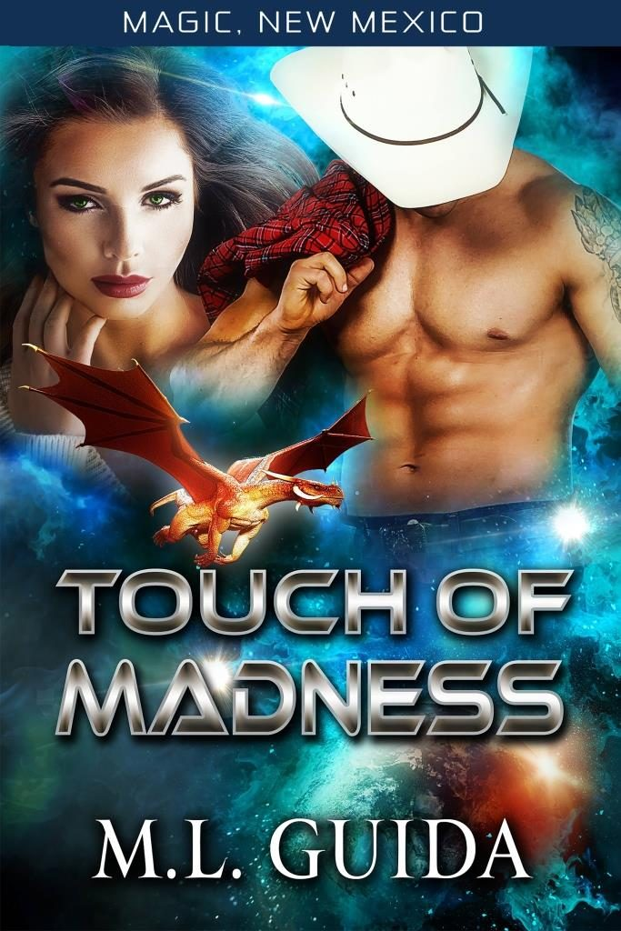 Touch of Madness by ML Guida book cover
